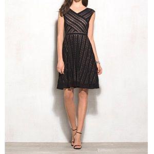 🌼 DB Signature Harper Black Lace Overlay Dress